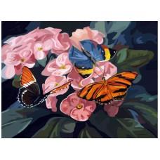 Картина-раскраска по номерам «Бабочки на цветах» 40*50 см