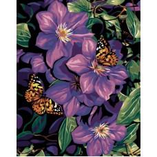 Картина-раскраска по номерам «Бабочки в лиловом» 40*50 см