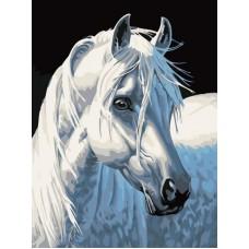 Картина-раскраска по номерам «Белая лошадь» 30*40 см