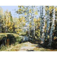 Картина-раскраска по номерам «Березы у пруда» 40*50 см