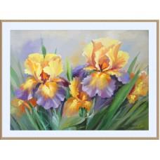Картина-раскраска по номерам «Ирисы» 40*50 см