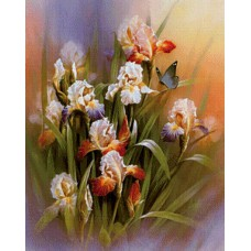 Картина-раскраска по номерам «Ирисы и бабочка» 40*50 см