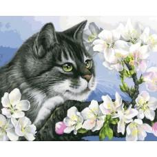 Картина-раскраска по номерам «Яблоневый цвет» 40*50 см