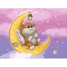 Картина-раскраска по номерам «Котик на Луне» 30*40 см