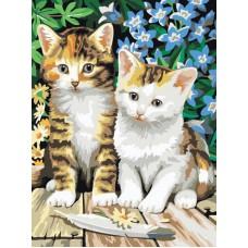 Картина-раскраска по номерам «Котята» 30*40 см