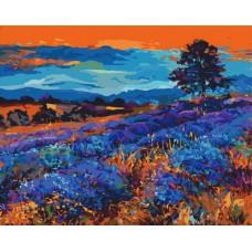 Картина-раскраска по номерам «Лавандовые поля» 40*50 см