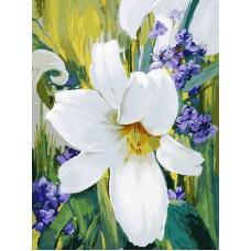Картина-раскраска по номерам «Лилия» 30*40 см