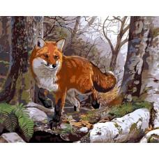 Картина-раскраска по номерам «Лисица» 40*50 см