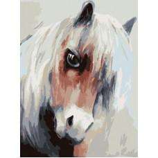 Картина-раскраска по номерам «Лошадка» 30*40 см