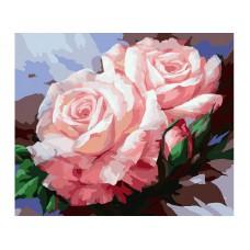 Картина-раскраска по номерам «Нежные розы» 40*50 см