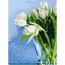 Картина-раскраска по номерам «Нежные тюльпаны» 30*40 см
