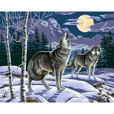 Картина-раскраска по номерам «Ночные охотники» 40*50 см