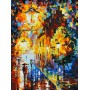 Картина-раскраска по номерам «Огни в ночи» 40*50 см