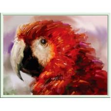 Картина-раскраска по номерам «Попугай» 30*40 см
