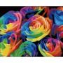 Розы абстракция