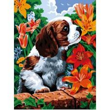 Картина-раскраска по номерам «Щенок и лилии» 30*40 см