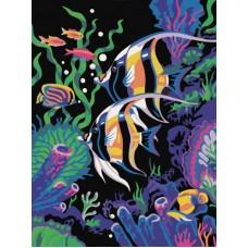Картина-раскраска по номерам «Скалярии» 40*50 см