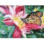 Картина-раскраска по номерам «Сладкий нектар» 30*40 см