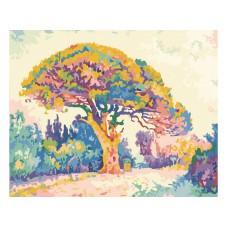Картина-раскраска по номерам «Сосна Сен-Тропе» 40*50 см