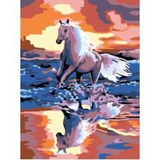 Картина-раскраска по номерам «Стремительный бег» 30*40 см