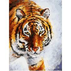 Картина-раскраска по номерам «Тигр на снегу» 40*50 см
