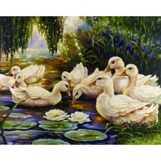 Картина-раскраска по номерам «Утиная семья» 40*50 см