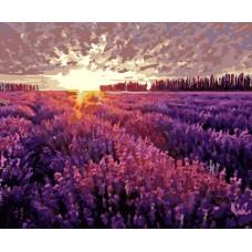 Картина-раскраска по номерам «Вечер в Провансе» 40*50 см