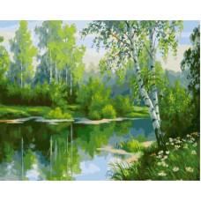 Картина-раскраска по номерам «Березки у озера» 40*50 см