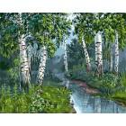 Березы у ручья