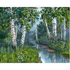 Картина-раскраска по номерам «Березы у ручья» 40*50 см