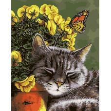 Картина-раскраска по номерам «Довольный кот» 40*50 см