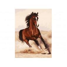 Картина-раскраска по номерам «Галоп» 30*40 см