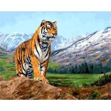 Картина-раскраска по номерам «Хозяин тайги» 40*50 см