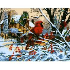 Картина-раскраска по номерам «Красный кардинал» 40*50 см