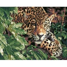 Картина-раскраска по номерам «Леопард в кустах» 40*50 см