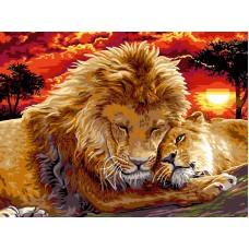 Картина-раскраска по номерам «Лев и львица» 40*50 см