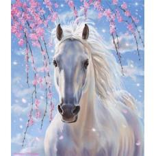 Картина-раскраска по номерам «Лошадь белогривая» 40*50 см