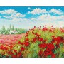 Картина-раскраска по номерам «Маковое поле» 40*50 см