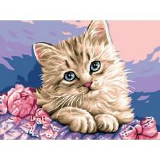 Картина-раскраска по номерам «Милая кошечка» 30*40 см