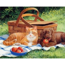 Картина-раскраска по номерам «На пикнике» 40*50 см