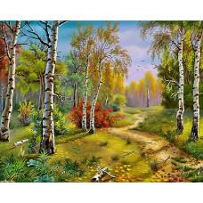 Картина-раскраска по номерам «Осень в лесу» 40*50 см
