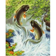 Картина-раскраска по номерам «Прыгающие карпы» 40*50 см