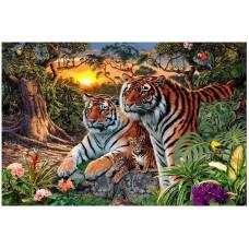 Картина-раскраска по номерам «Семья амурских тигров» 40*50 см