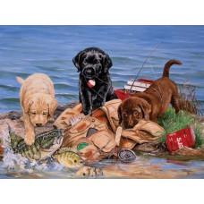 Картина-раскраска по номерам «Щенки на рыбалке» 40*50 см