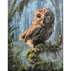 Картина-раскраска по номерам «Сова в сказочном лесу» 40*50 см
