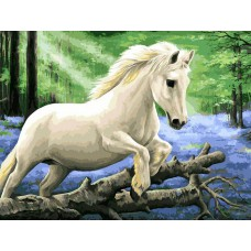 Картина-раскраска по номерам «В лесу диких гиацинтов» 30*40 см