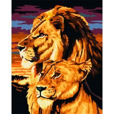 Картина-раскраска по номерам «Величественный взгляд» 30*40 см