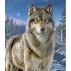 Картина-раскраска по номерам «Волк» 40*50 см
