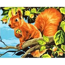 Картина-раскраска по номерам «Белочка с орешком» 30*40 см