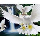Белые голубки